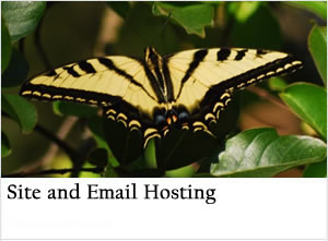 Outback Solutions Internet site email hosting